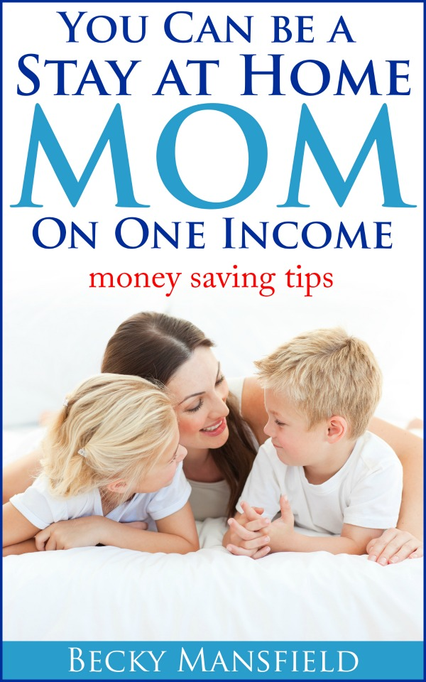 sahm one income