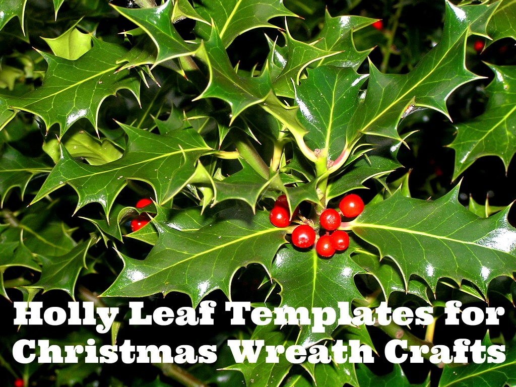 Free Printable Wreath Templates Holly Leaf Stencils What Mommy Does