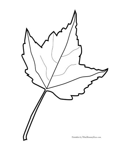 Large printable maple leaf pattern - one of 3 sets of maple leaves. You can use these outlines for crafts, fall project templates, even coloring pages!