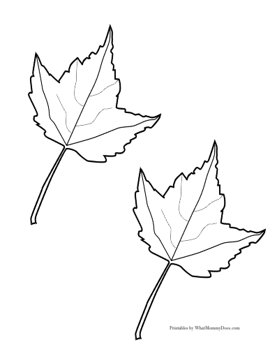Cree D I furthermore P Cy Y Tn in addition Oak Jungle Leaf Template Templates To Cut Out Printable Tree Best Ideas On Free Family moreover Free Apple Template moreover Coloring Page Maple Leaves Pages Leaf Color. on fall leaf outline page
