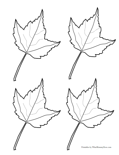 4 Maple Leaves With Veins