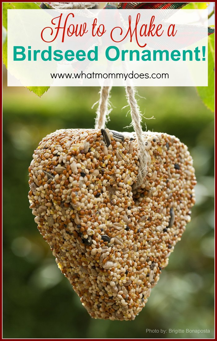 How To Make A Bird Seed Ornament What Mommy Does