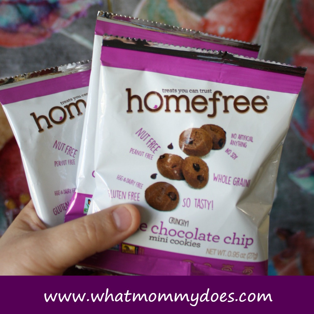 Dairy Free Nut Free Soy Free Gluten Free Egg Free Chocolate Chip ...