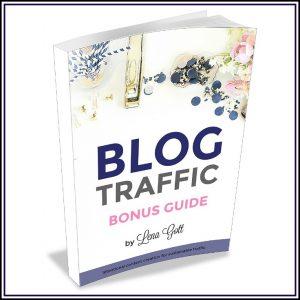 Blog Traffic Bonus Guide: 3 Ways to Get More Page Views!